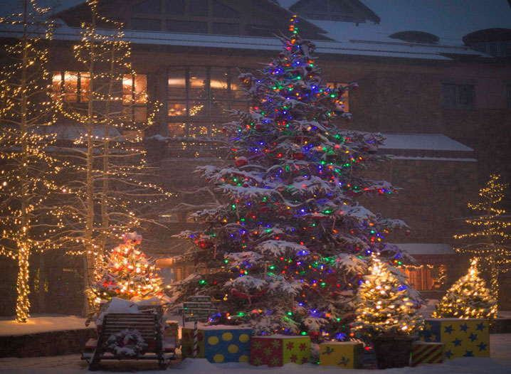 Holiday Prelude Tree Lighting