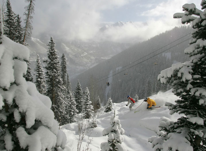 Ski In Powder