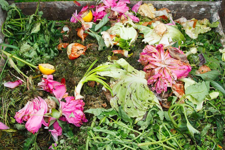 compost-incentive